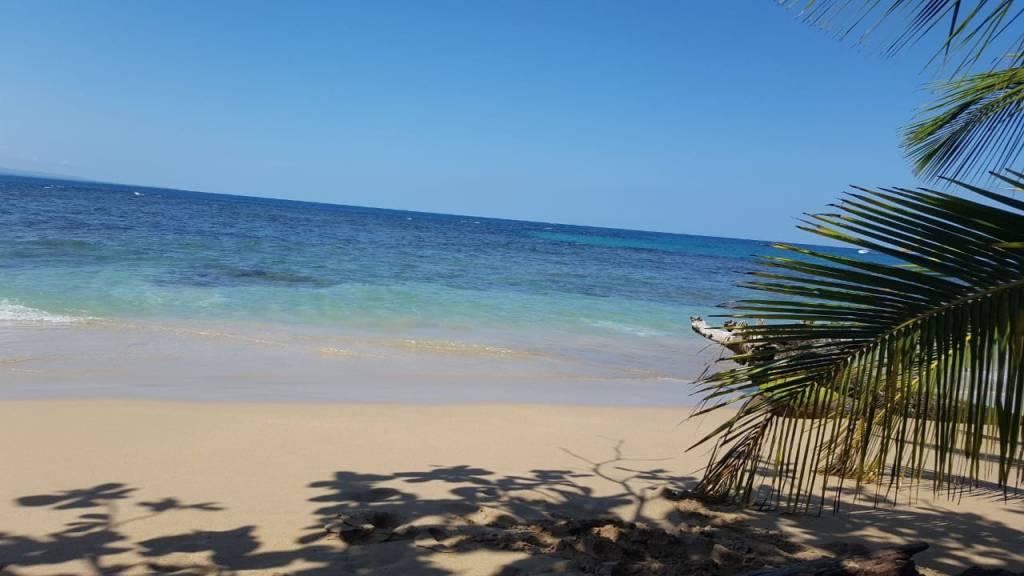 Estado de los Arrecifes Coralinos en Costa Rica