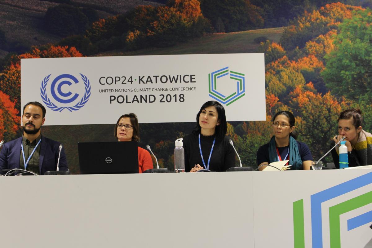 Participación Pública en las Decisiones Climáticas